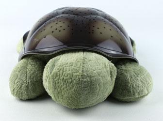 Twilight Turtle Kopf